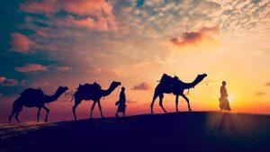 राजस्थान का इतिहास | history of Rajasthan