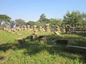 दीमापुर जिला